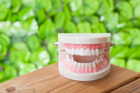 periodontal disease: Dental image Stock Photo