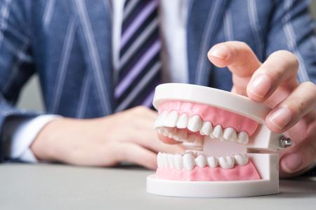 molars: Dental image Stock Photo