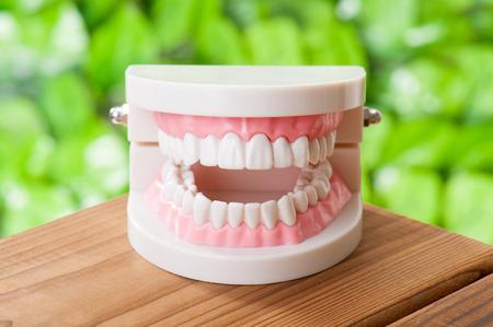 Dental image Stock Photo