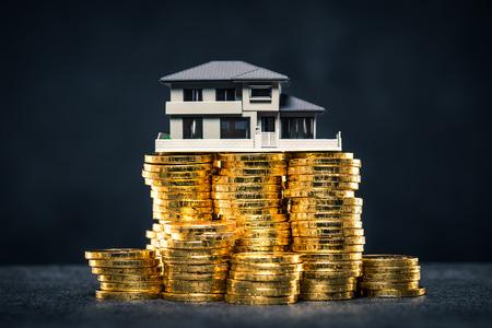 大量のお金と家のモデル 写真素材