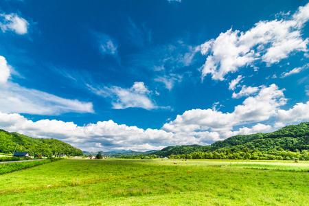 Pastizales y cielo azul Foto de archivo - 81371851