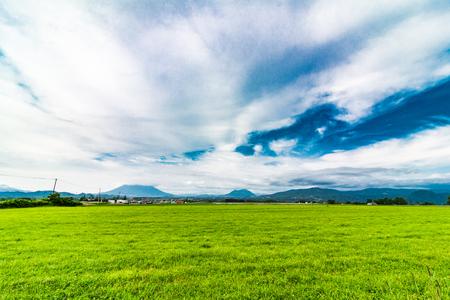 Grassland and blue sky
