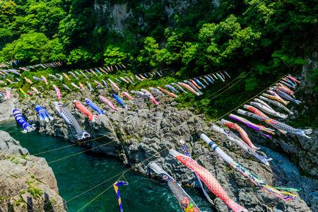 Bergstroom en landschap Japan Azië