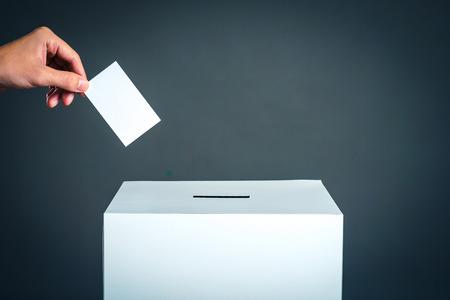 Pole do głosowania i obraz wyborczy