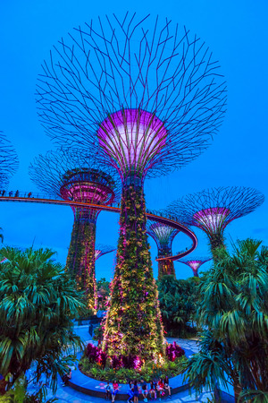 SINGAPORE, May 16,2018 : Super trees at garden by the bay in marina bay Singapore.Colorful lighting show and music at the night. Редакционное
