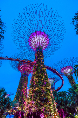 SINGAPORE, May 16,2018 : Super trees at garden by the bay in marina bay Singapore.Colorful lighting show and music at the night. 報道画像
