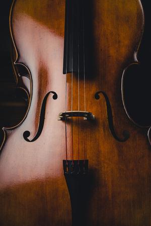Cello Studio shoot