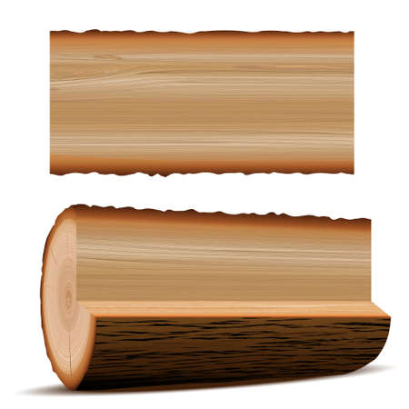 tree stump: wooden elements Illustration