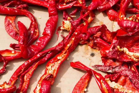 red pepper: Red pepper dries in the sun and a black fly is sitting in between