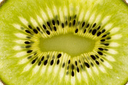 backlight: Kiwi closeup with backlight