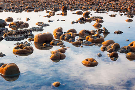 langkawi island: Exposed coral reef at low tide on a beach on Langkawi island Malaysia reflecting the cloudy sky Stock Photo