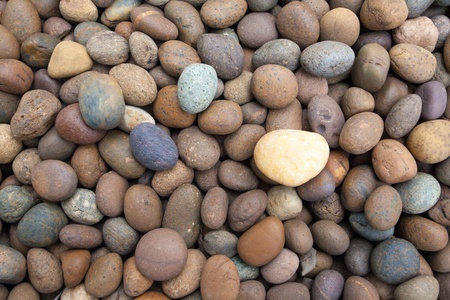 dry stone: Color pebble stone in background