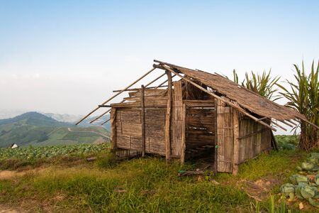 Old hut on mountain in vegetable farm