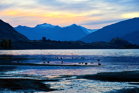 Lake Wanaka twilight time with a flock of ducks