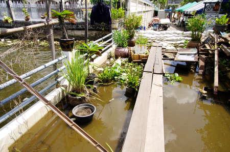 thailand flood: 25 october 2011 protect Bangkok city From heavy flood