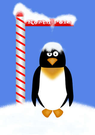 north pole sign: Penguin standing under the North Pole sign with snow dropping onto his head. Stock Photo