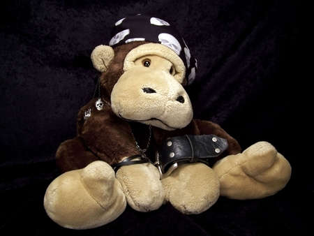 Portrait of a stuffed monkey dressed up as a tough guy with a skull bandana, black leather bracelets, a chain, and an earring. photo