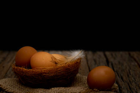 Still life-Eggs on nest arranged in a black scene, Food concept. Dark tone picture.