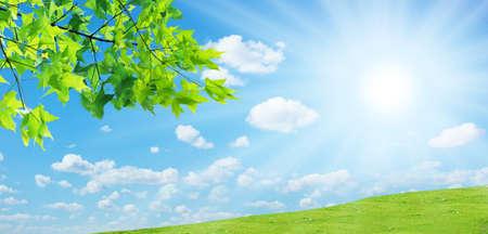 The landscape of the sun lawn  Stock Photo