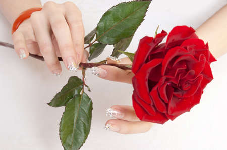 Female fingers and red roses Stock Photo - 13211025