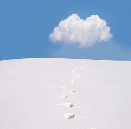 snowbank: Footsteps on the snow.