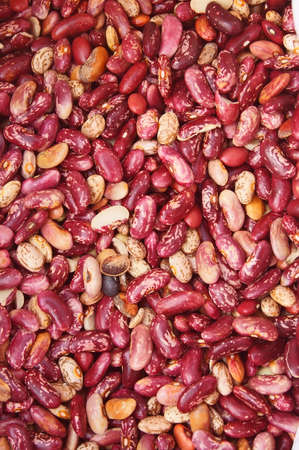 The bright red seeds in close-up. photo