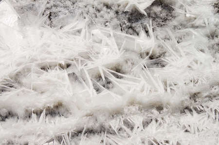 Closeup of ice crystals with very shallow DOF photo