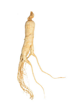elixir: Ginseng secos aislados sobre fondo blanco