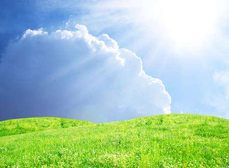 green grass and sun sky  Stock Photo - 14020999