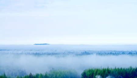 Fog on the mountain in the summer morning Stock Photo - 14319912