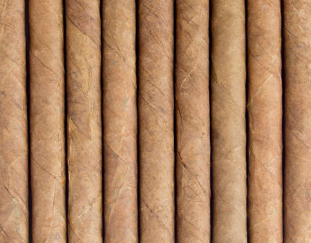 Cigars in a row close-up, may be used as background