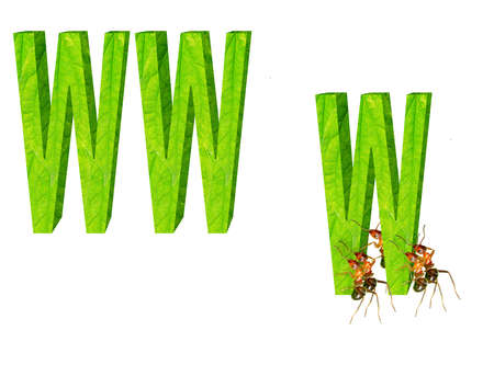 wehosting: The ants are mobile WWW pattern