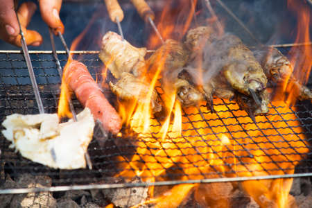 shishkabab: In a variety of meat on the grill Stock Photo