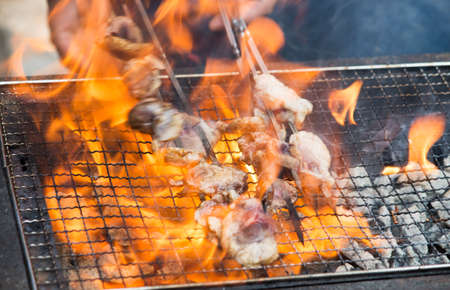 shishkabab: Many mutton kababs on the grill closeup