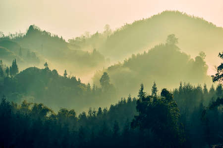 The hills overlap in the morning mist.