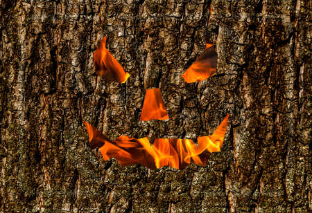 creepy smile wooden background, fire mask on the bark holiday halloween background festive Stock Photo
