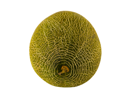 green melon along a white background close-up with a natural pattern mesh Imagens