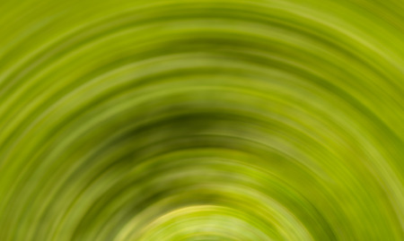 green abstract background of a hemisphere. Texture rotating monochrome floral pattern