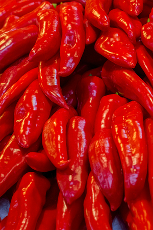 sweet red peppers long pods shiny many vegetables vertical perspective background gastronomic base of salsa and sauce