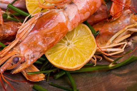 large langoustine with head paws moist against the background of lemon twigs of dill and parsley delicious appetizer Stock Photo