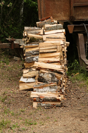 stack chopped birch firewood pile high in profile on dry ground background stocking firewood winter fireplace Stockfoto