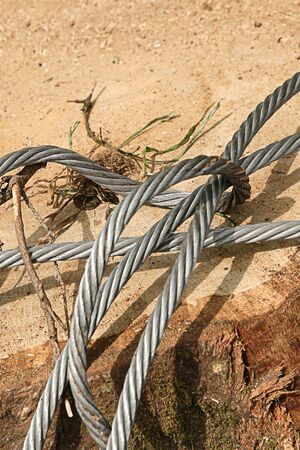Hard silver metallic cable closeup lies on the background of a sawn big tree, industrial design Reklamní fotografie