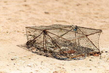 iron trap traditional crab asia close-up on sand background tropical beach 스톡 콘텐츠