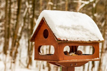 wooden bird house brown traditional manger roof snow help birds protect forest dwellers