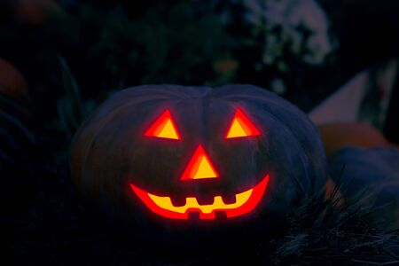Halloween holiday decor, pumpkin jack-o'-lantern jack scare evil spirits Kho ảnh