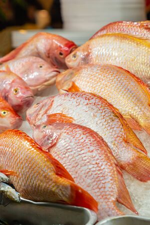 red sea bass set lies on ice a tray of asia fish market