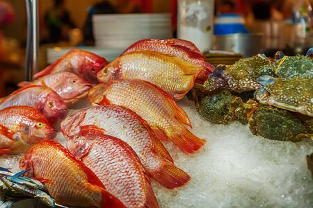 red fish, a snapper lies on ice to keep fresh and salable Foto de archivo