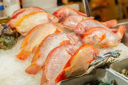 fish counter red snapper laid on crushed ice culinary background
