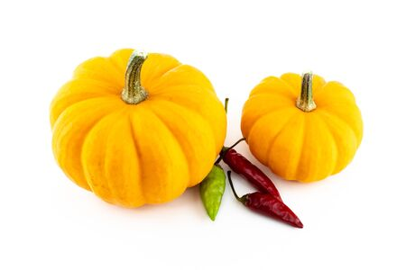 set of vegetables pumpkin orange with red and green chili pepper pod on an isolated white background Banco de Imagens