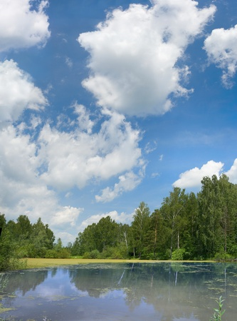 summer pond with clouds on blue sky. vertical panorama. photo